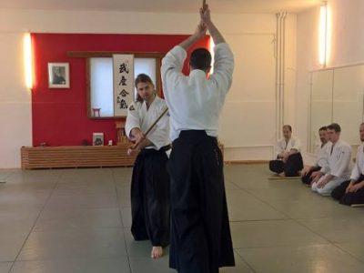 Lehrgang mit Fabian Horn, Shidoin, 5. Dan Aikikai